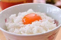 花たまご自慢の卵かけご飯