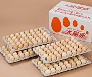 業務用卵の販売