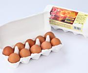 新鮮卵「太陽卵」10個入り1パック
