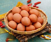 健康運を呼ぶ大寒の卵