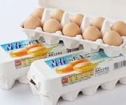 太陽卵の小粒タイプ「青春のたまご」10個入り3パック