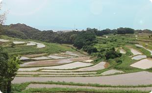 長崎と佐賀の県境にある多良岳
