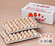 送料無料「業務用卵」ピンク玉Lサイズ80個入り