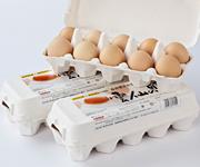 自然豊かに育まれた「雲仙の卵」10個入り3パック