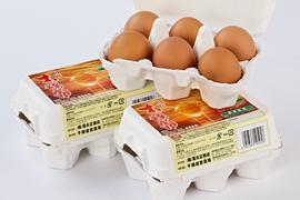 自然卵「太陽卵」6個入り3パック