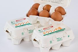 最高級鶏卵「タウリンの里」6個入り3パック